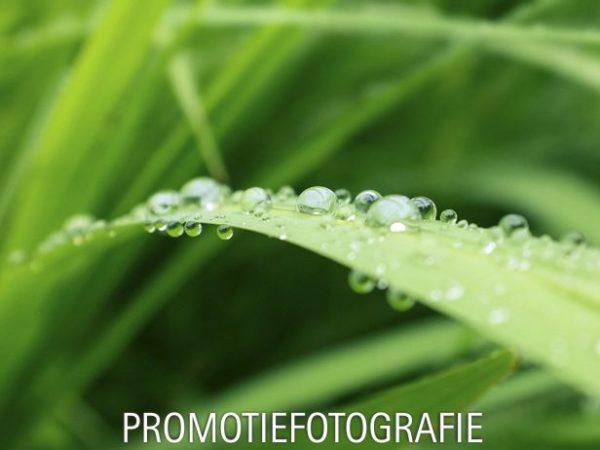 Promotiefotografie
