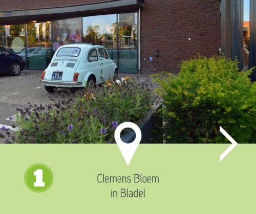 Clemens Bloem & Groenstylisten in Bladel